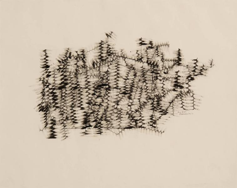 Untitled (Winter Branches), 1950 ink on paper 19&q...