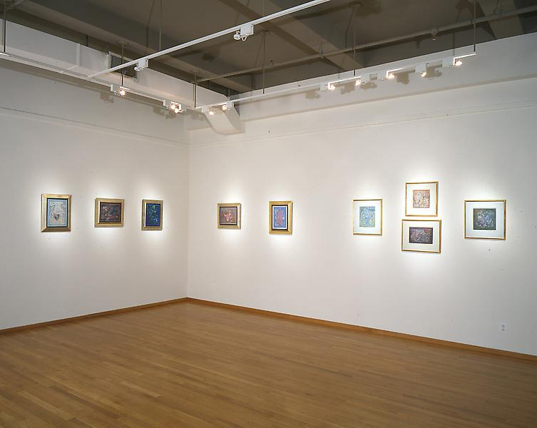 Installation Views - Charles Seliger: Nature's Journal, Recent Painting - February 19 – April 2, 1994 - Exhibitions
